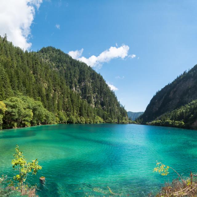 """Panda Lake, Jiuzhaigou"" stock image"