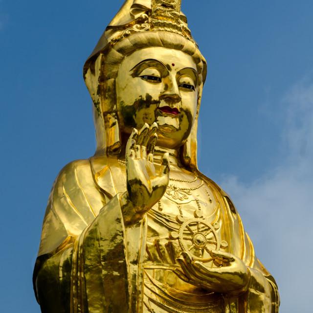 """Standing Budda"" stock image"