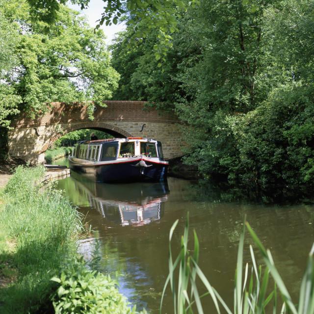 """""""Basingstoke Canal. Hampshire."""" stock image"""