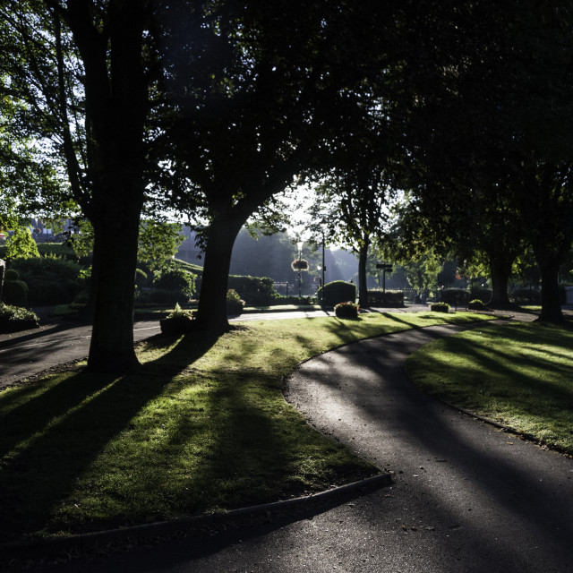 """Sinshine through Trees in Tamworth Castle Grounds"" stock image"