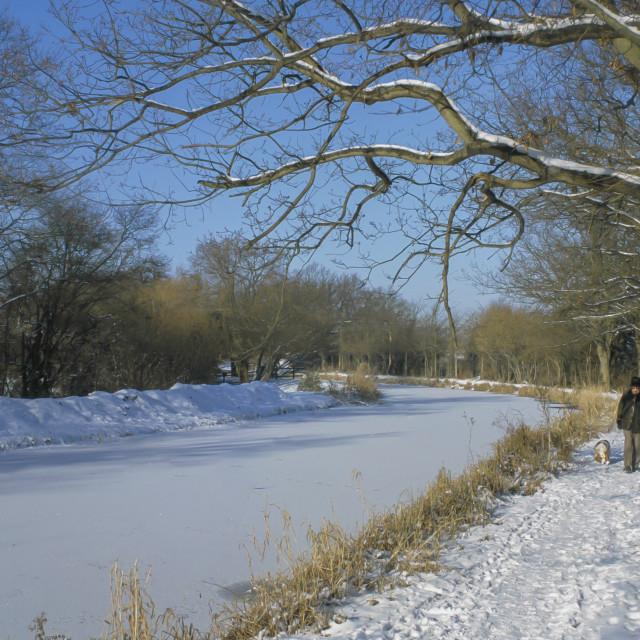 """""""Basingstoke Canal - Winter ,Hampshire England"""" stock image"""
