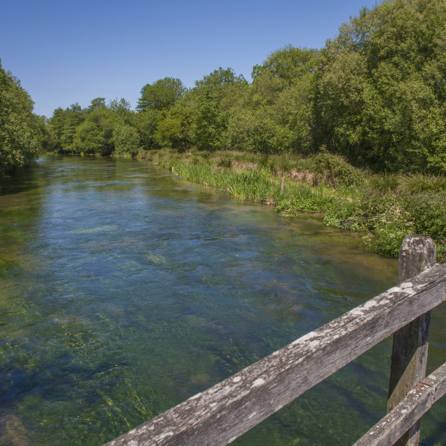 """River Itchen,Hampshire England"" stock image"