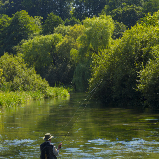"""Fly Fishing ,River Itchen,Hampshire England"" stock image"