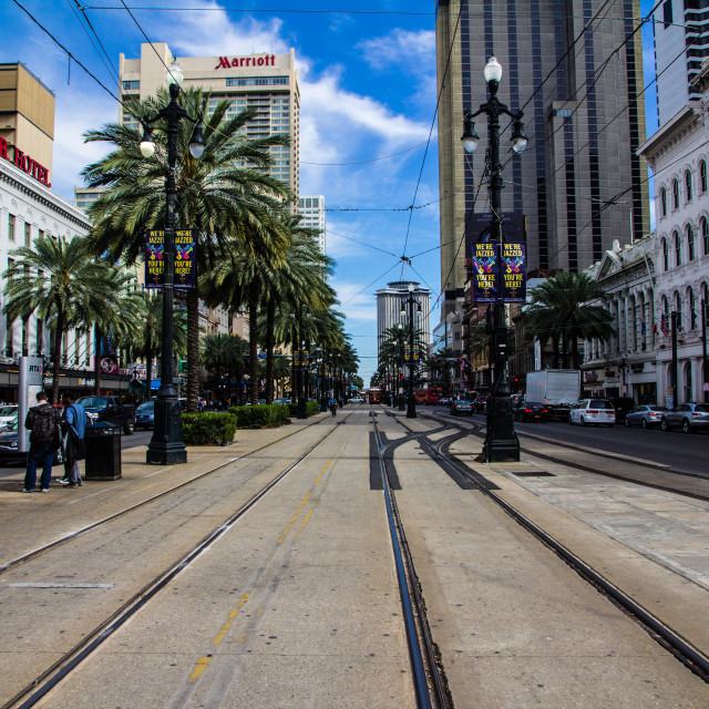 """Street car tracks in New Orleans"" stock image"
