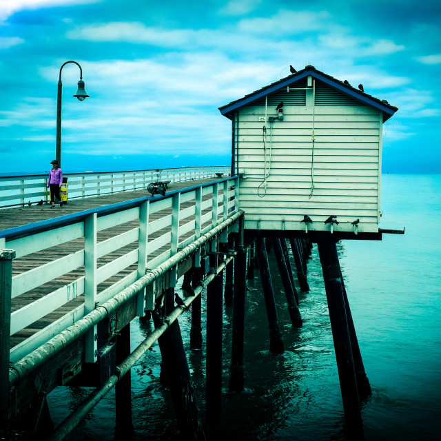 """Pier in the Morning"" stock image"