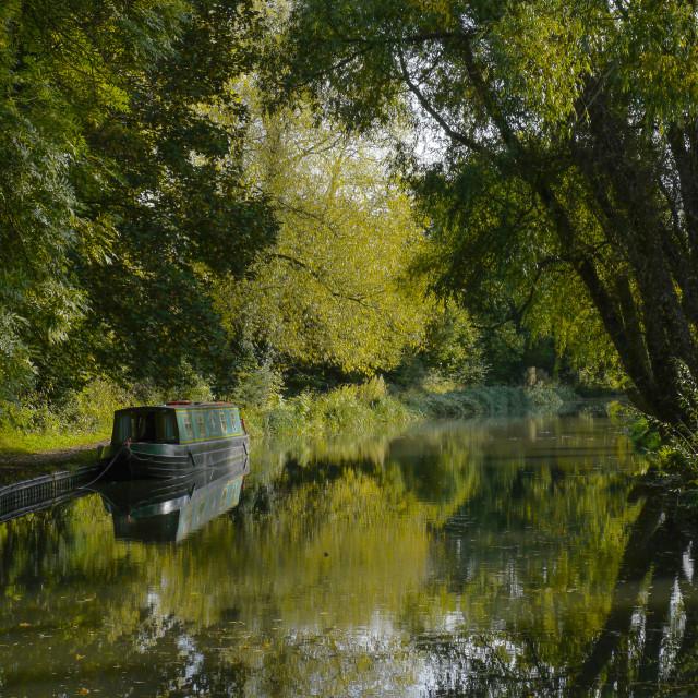 """""""Basingstoke Canal , Hampshire , England"""" stock image"""