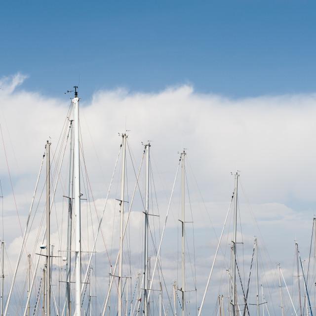 """""""Many sailing boat mast on blue sky"""" stock image"""