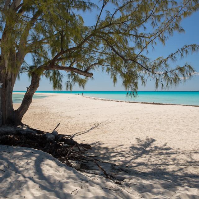 """A Cuban beach."" stock image"