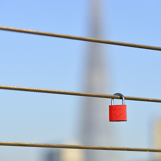 """Red padlock locked to a fence"" stock image"