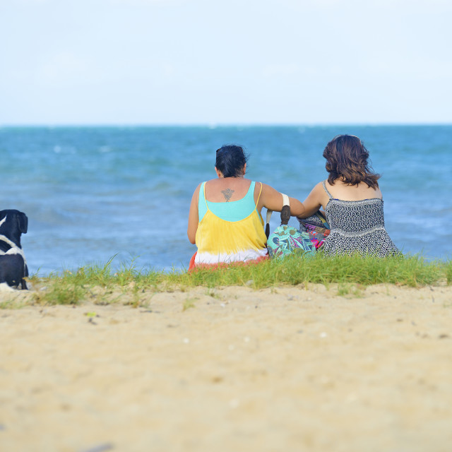 """""""Women and a dog enjoy the beach"""" stock image"""