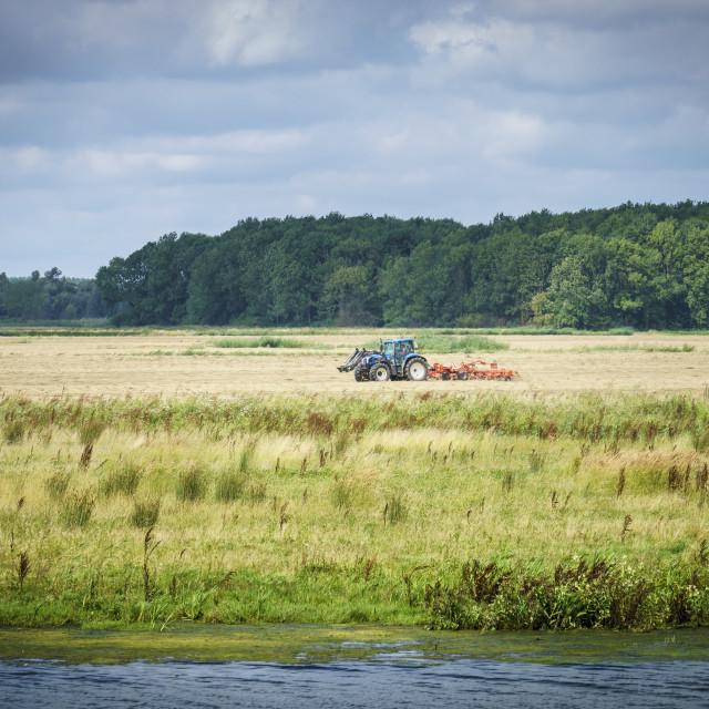 """View across the biesbosch"" stock image"