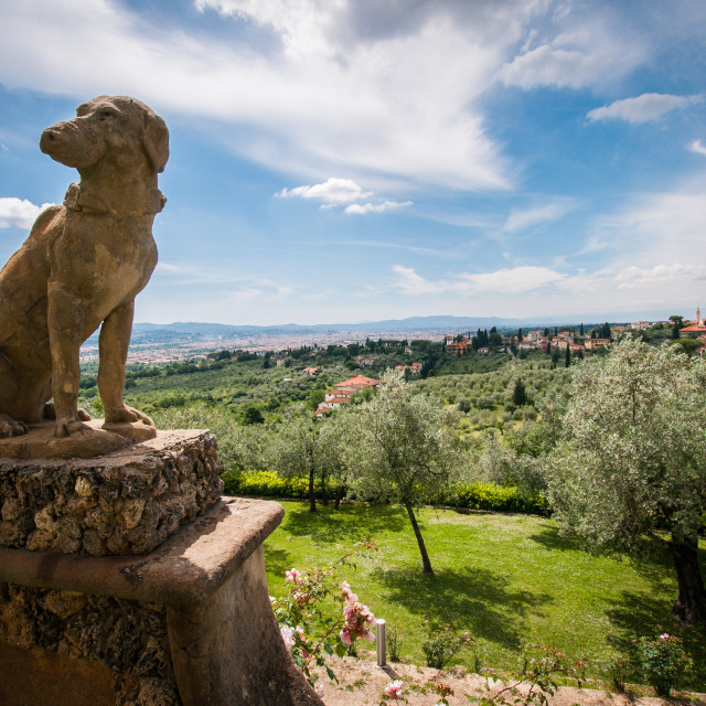 """Florence from Settignano"" stock image"