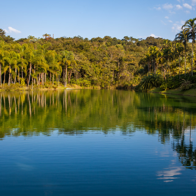 """Artificial Lake at Inhotim Contemporary Art Institute"" stock image"