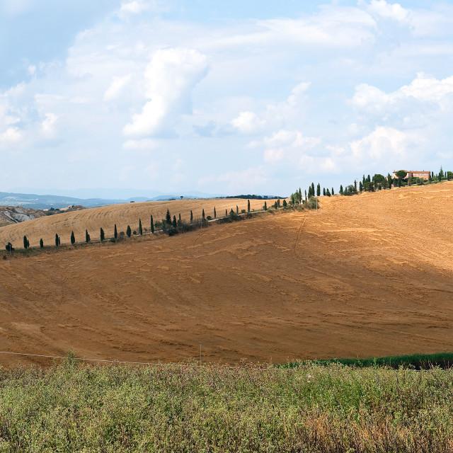 """Tuscany panorama"" stock image"