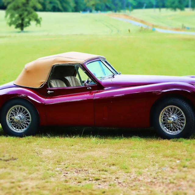 """Jaguar XK150"" stock image"