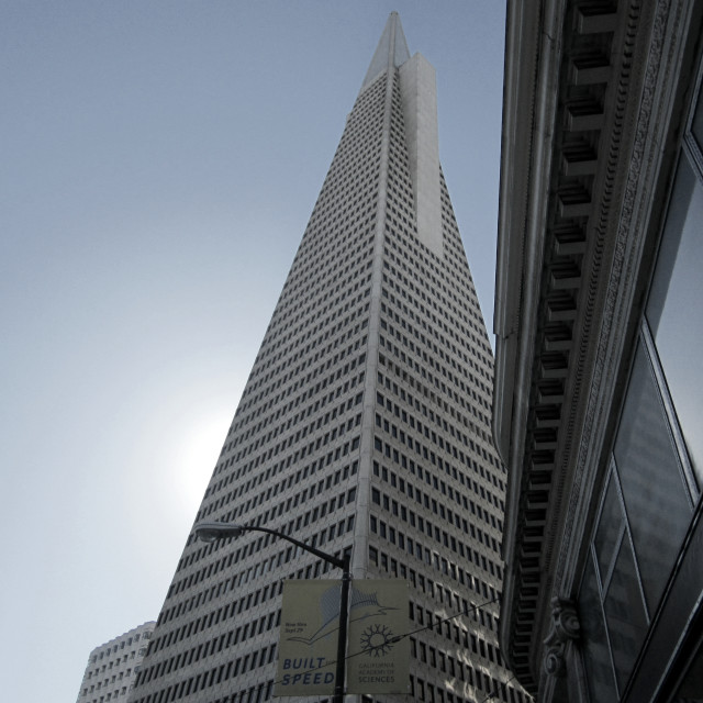 """Transamerica Pyramid, San Francisco"" stock image"