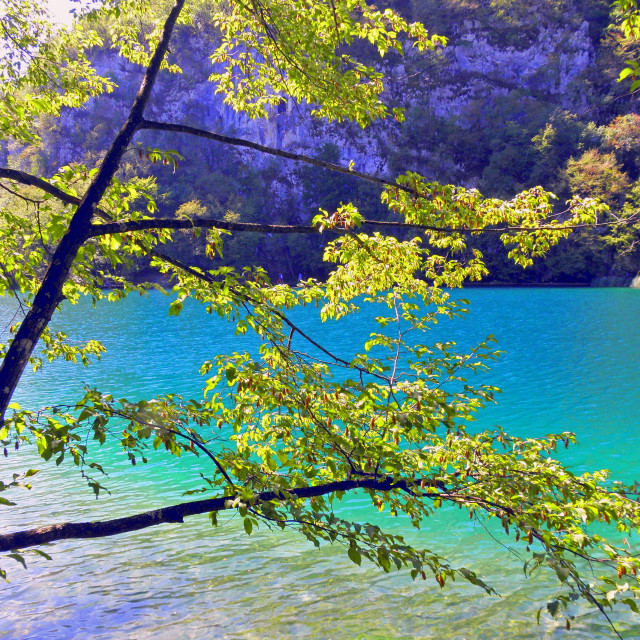 """Plitvice lakes and waterfalls,6"" stock image"