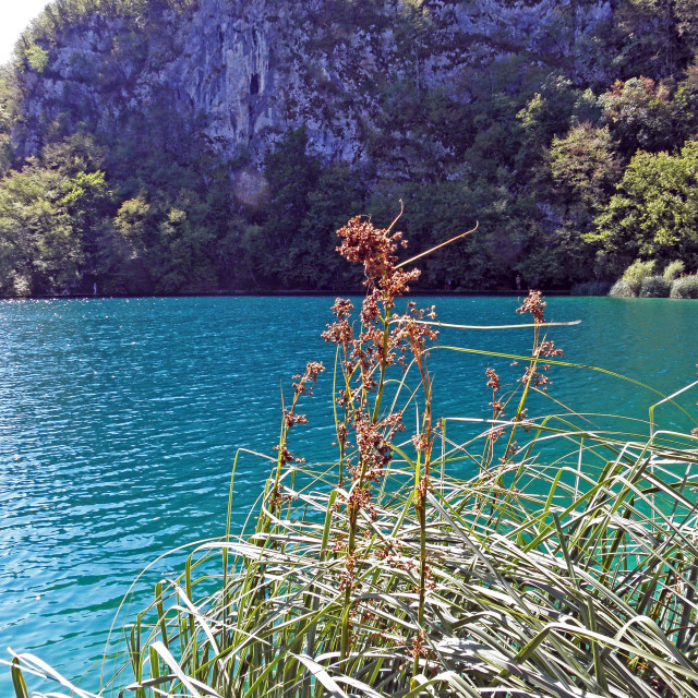 """Plitvice lakes and waterfalls,7"" stock image"