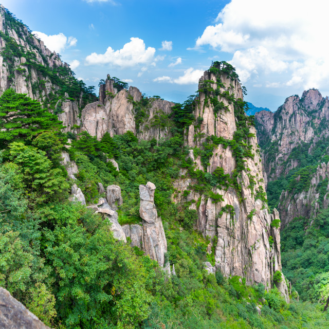 """Huangshan National Park, China."" stock image"