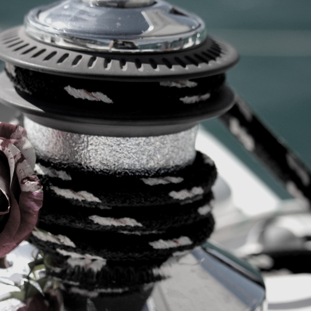 """Rose on Winch"" stock image"