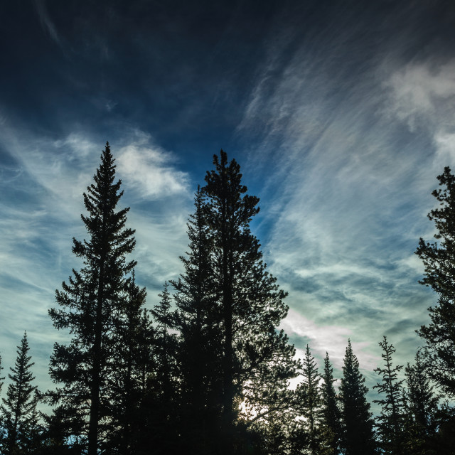 """Morning Cloud"" stock image"
