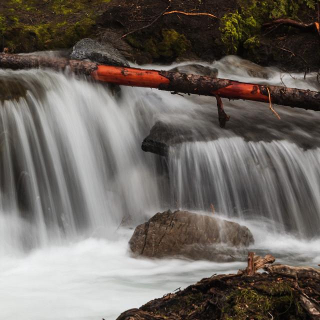 """Sarrail Creek"" stock image"