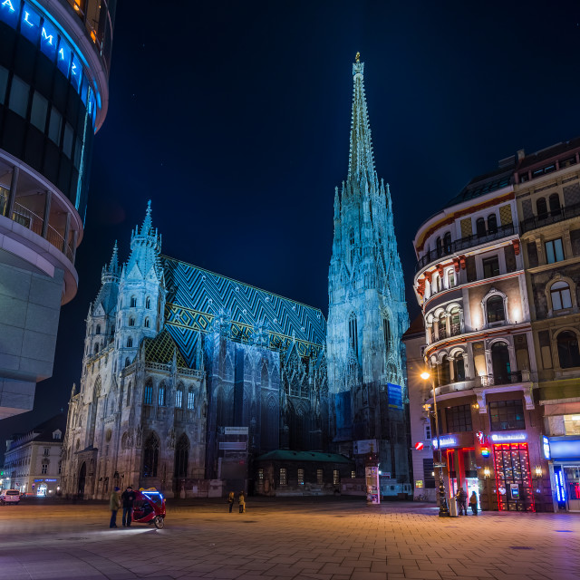 """Saint Stephen's cathedral Vienna"" stock image"