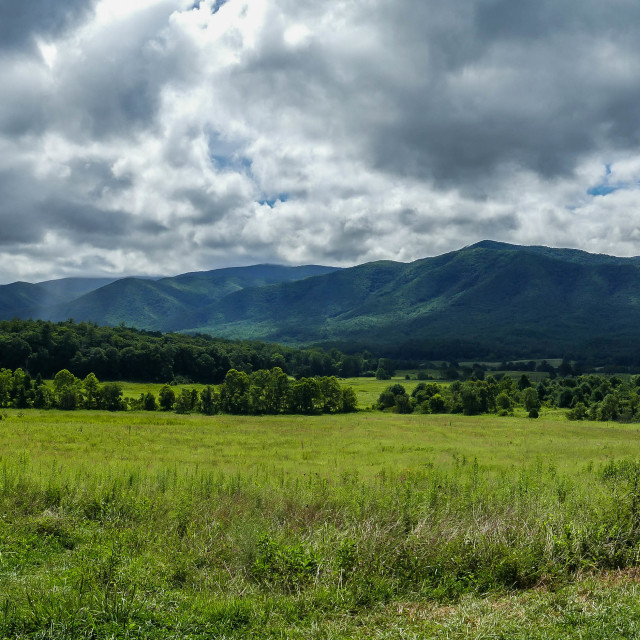 """View from Cades Cove in Great Smoky Mountains National Park"" stock image"
