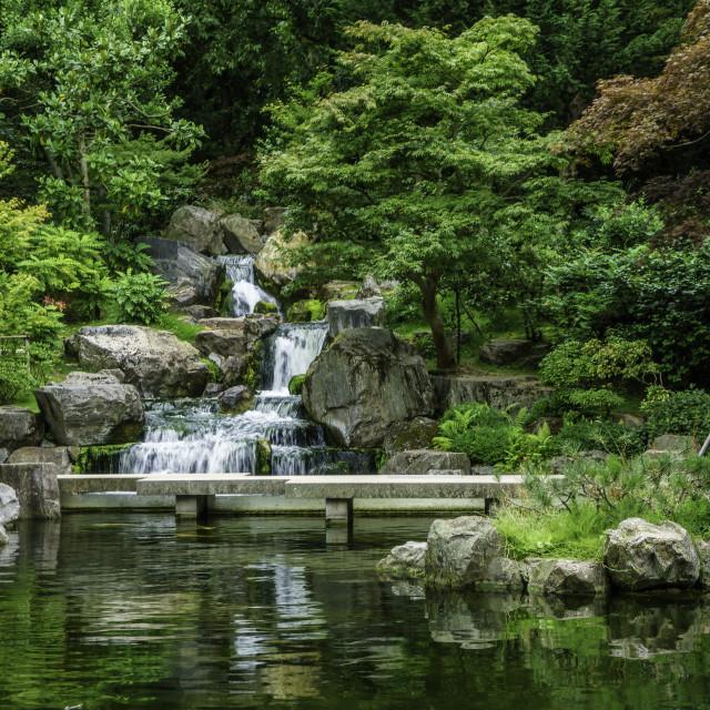 """Kyoto garden"" stock image"