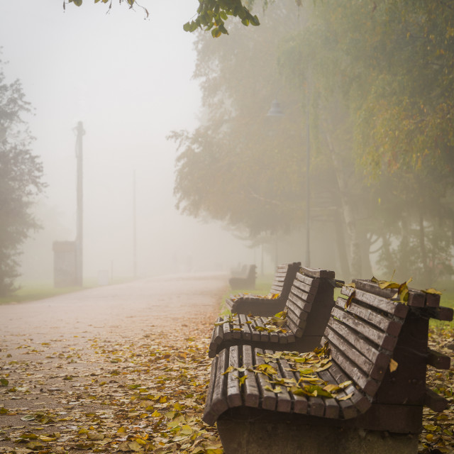 """Promenade, foggy day, bench"" stock image"