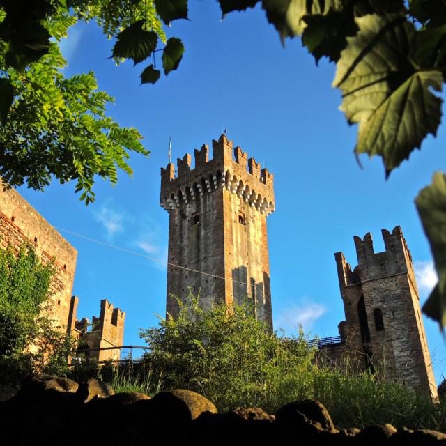 """Castello Scaligero"" stock image"