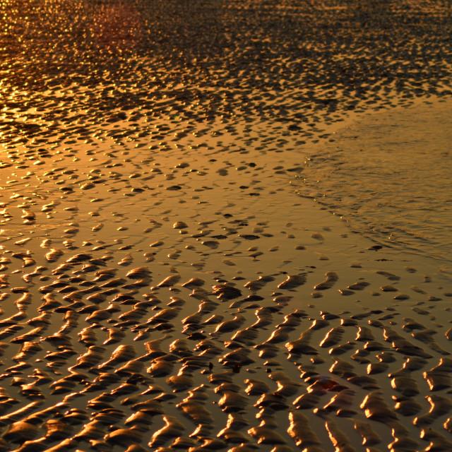 """Golden hour"" stock image"
