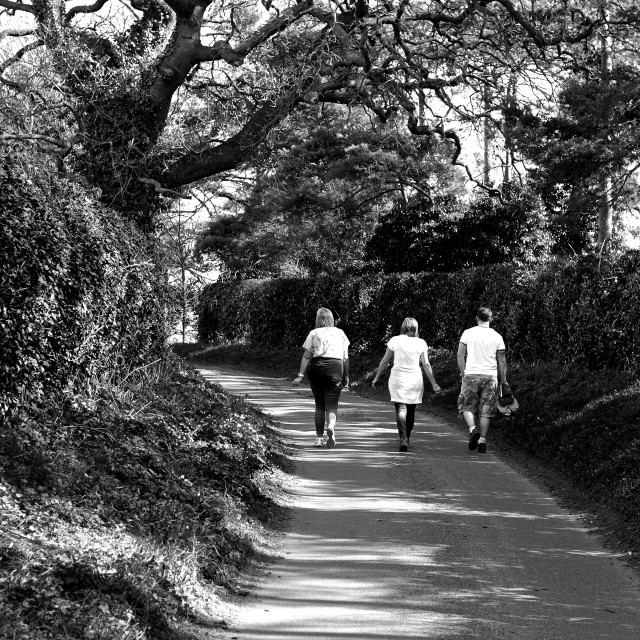 """""""Stroll. Three friends on a country stroll. Mono"""" stock image"""