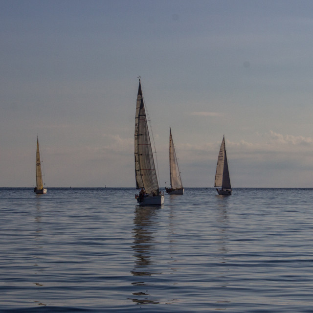"""Sliema Yachts"" stock image"