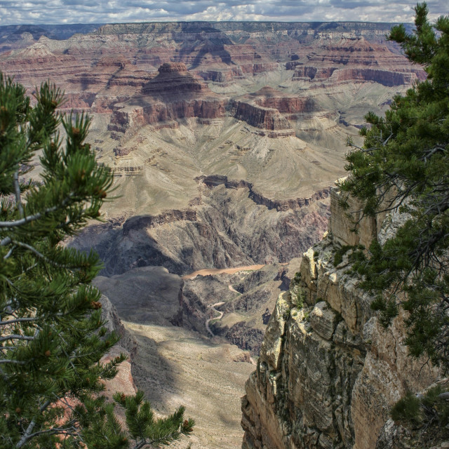 """View at Grand Canyon"" stock image"