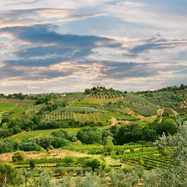"""""""Tuscany landscape"""" stock image"""