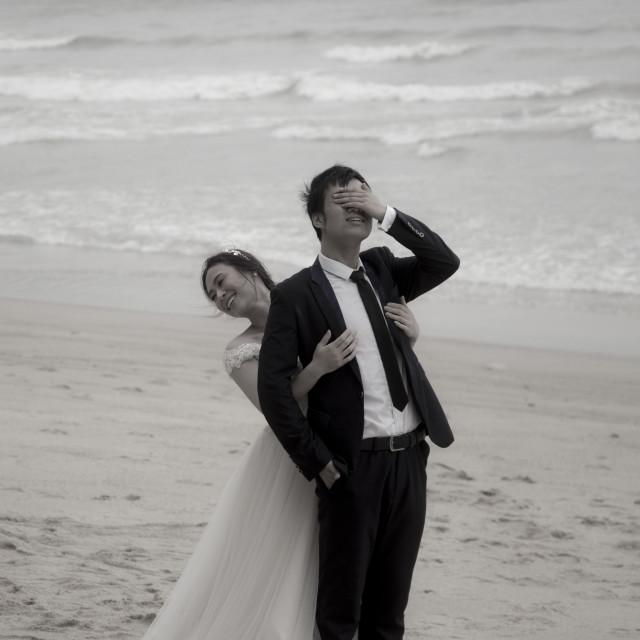 """Wedding poses"" stock image"