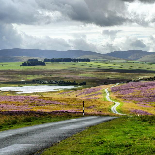 """The Road to Sunbiggin Tarn"" stock image"