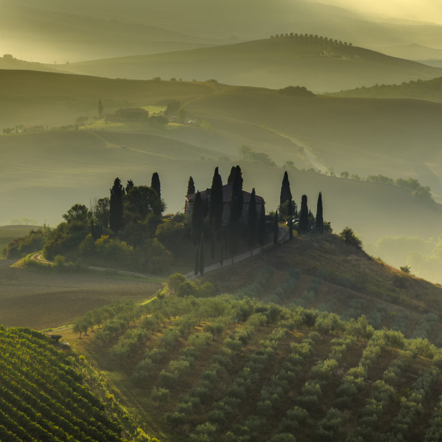 """""""Tuscany Landscape,autumn field,lonely house in Tuscany"""" stock image"""