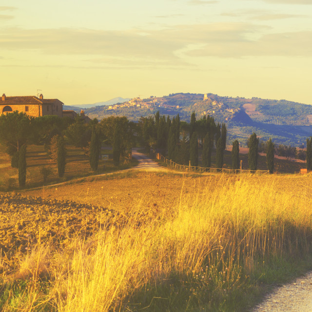 """""""farmhouse in the Tuscan hills of the beautiful autumn morning"""" stock image"""