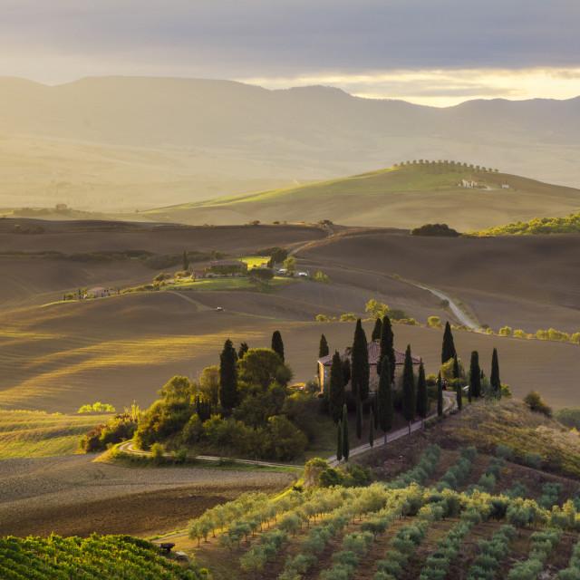 """""""Tuscan autumn landscape,retro colors, vintage"""" stock image"""