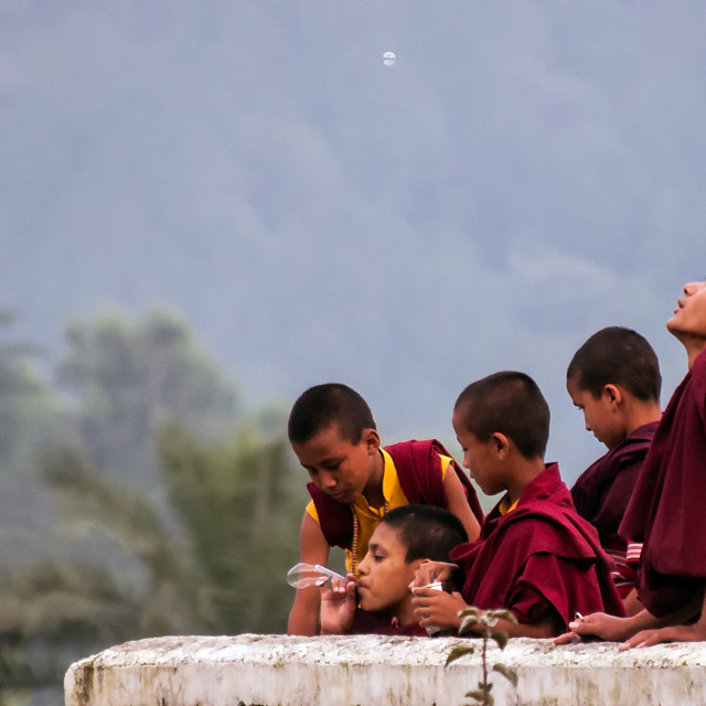 """Young Monks playing"" stock image"