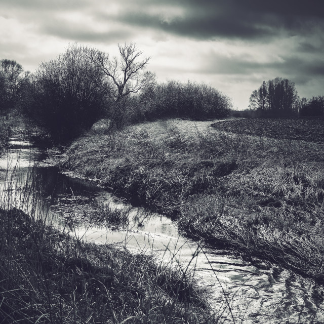 """Black and White Landscape with Stream"" stock image"