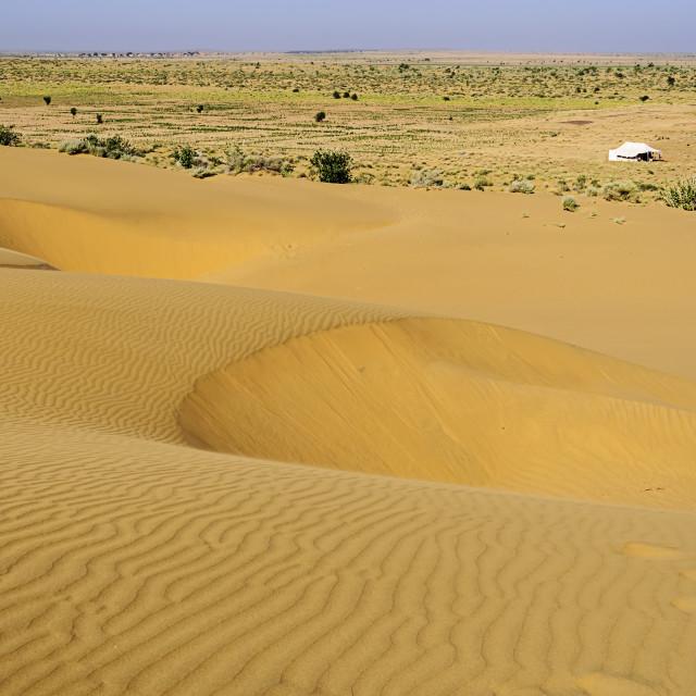"""Sand dunes, white tent, SAM dunes of Thar Desert of India with c"" stock image"
