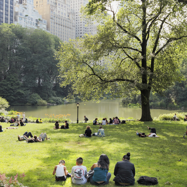 """Central Park"" stock image"