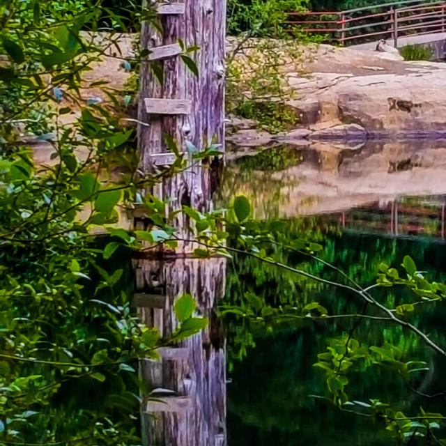 """Ladder Reflection"" stock image"