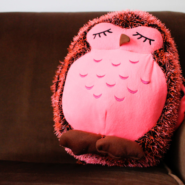 """Sleepy owl"" stock image"