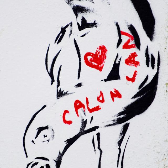 """""""Calon Lan"""" stock image"""
