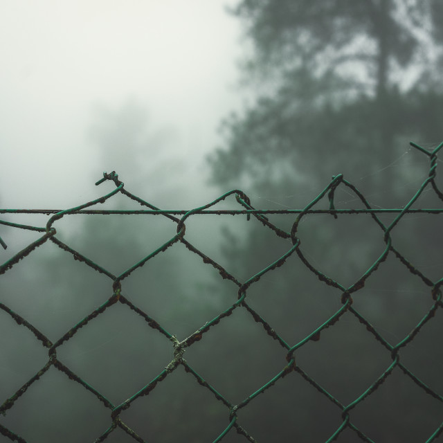 """Foggy on the other side"" stock image"