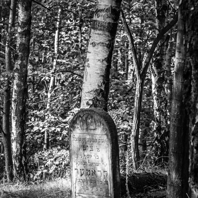 """""""Jewish cemetery"""" stock image"""